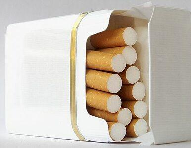 Sprzedali 8 ton tytoniu przez internet. Skarb państwa stracił 4 miliony...