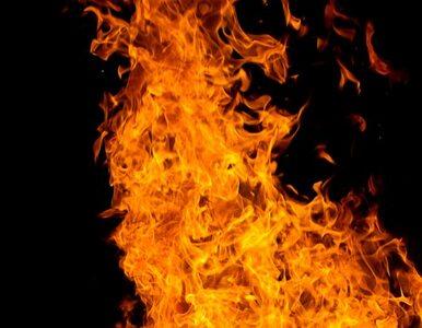 Ogień na Zamku Książ został zaprószony?