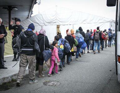 Dania odmawia przyjęcia większej liczby uchodźców