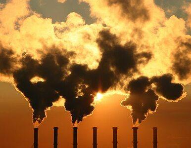 """""""Polska nie godzi się na zwiększenie redukcji emisji CO2"""""""