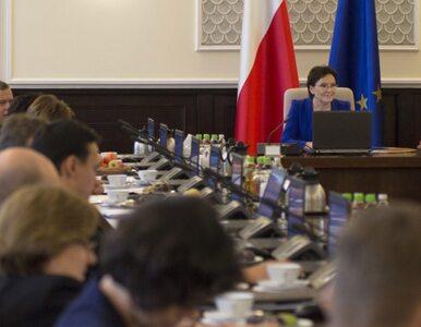 Pierwsze posiedzenie rządu Ewy Kopacz. Premier poklepała Schetynę po...