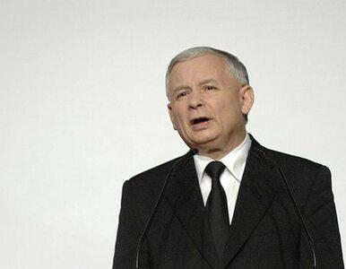 Posłanka PO: Kaczyński robi szum medialny, żeby go pokazywali