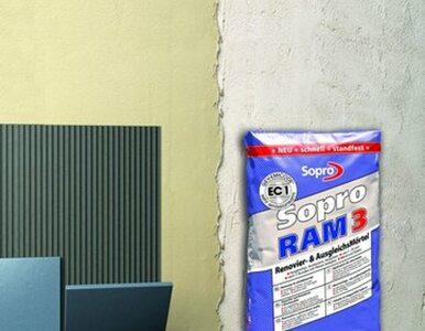 Do szybkiej renowacji: cementowa masa szpachlowa Sopro RAM3