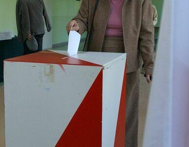 Nałęcz: Platforma może przegrać wybory do parlamentu