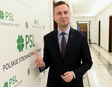 """""""Dzięki Kosiniakowi-Kamyszowi PSL może zgolić wąsy i wyjść z gumiaków"""""""