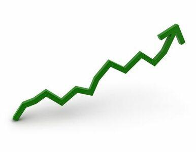 W 2009 r. PKB rósł wolniej niż podawano