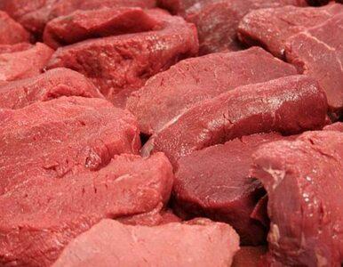 Alarm w Bułgarii: Mięso skażone wąglikiem w popularnych kurortach?