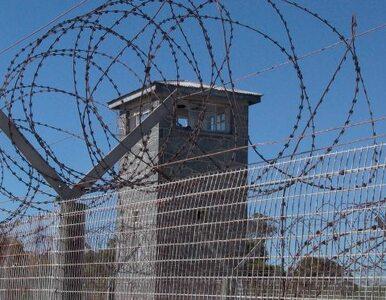 Bośniacki imam skazany na 7 lat więzienia. Werbował dżihadystów