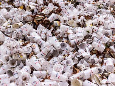 Koniec z plastikowymi opakowaniami i sztućcami? PE zatwierdził...