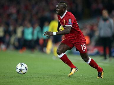 Polska – Senegal. Czy powinniśmy obawiać się rywali?