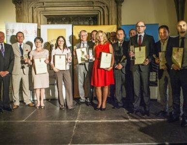 Domino nagrodzone Dolnośląskim Certyfikatem Gospodarczym