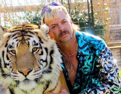 """Będzie dodatkowy odcinek """"Króla tygrysów"""" na Netfliksie! Co wiemy?"""