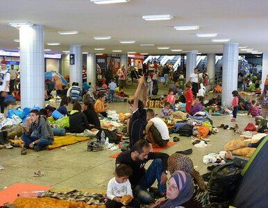 Holandia: Podejrzani o zbrodnie wojenne zidentyfikowani wśród migrantów
