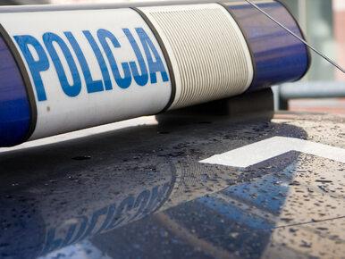 Łódź. 20-letnia Kaja została brutalnie zamordowana. Policjant usłyszał...