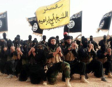 Konflikt w gnieździe szerszeni. Organizacje terrorystyczne walczą o wpływy
