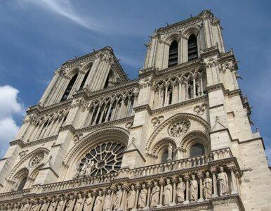 Chciał sfilmować Notre Dame z powietrza. Trafił do aresztu