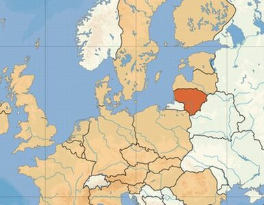 Wybory na Litwie pod okiem polskich parlamentarzystów