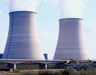 Bliżej atomu na Litwie