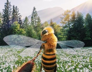 Pszczoła influencerka. Zbiera lajki, żeby ratować gatunek