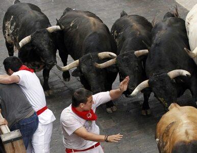 W Pampelunie znów uciekają przed bykami. Dwie osoby są ranne