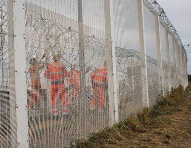 Ataki na polskich kierowców w Calais. Mariusz Błaszczak chce interwencji...