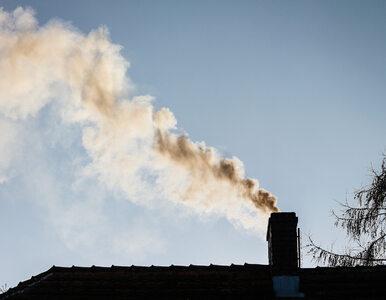 Program Czyste Powietrze. Porozumienie NFOŚiGW z bankami podpisane