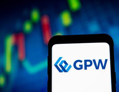 Ponad 500 polskich firm to potencjalni debiutanci