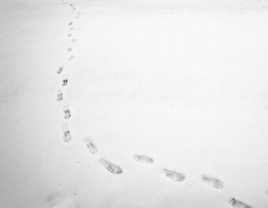 Znaleziono narty sprzed 1300 lat. Mają... oryginalne wiązania