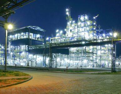 Koniec sporu o Zakłady Azotowe Puławy. Pracownicy: byliśmy nękani