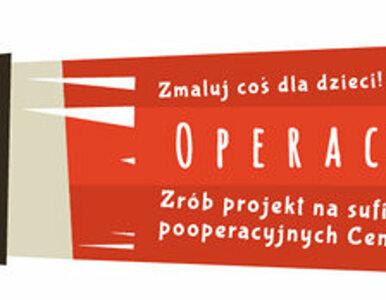 Znamy zwycięskie projekty Operacji sufit