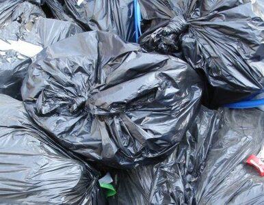 Nowe służby? Agenci skontrolują nasze śmieci