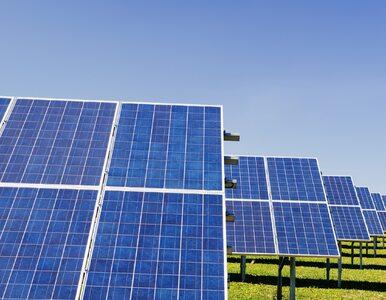 IBRiS: Ponad połowa badanych uważa Odnawialne Źródła Energii za zbyt drogie