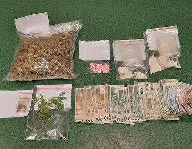 Potężny zapas narkotyków w domu 74-latki. Kobieta trafiła do aresztu