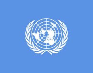 USA proponują RB ONZ kompromis ws. Korei Płn.