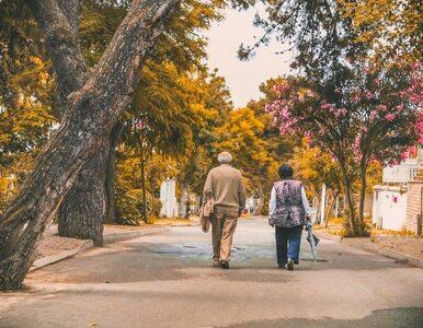 Jesień to idealna pora na spacer. Jak czerpać z niego najwięcej korzyści?