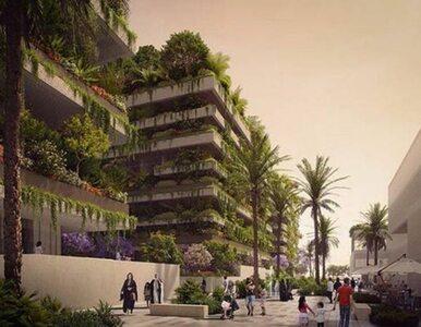 Egipt buduje nową stolicę. O zielone apartamentowce zadba gwiazda...