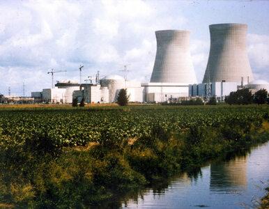 Elektrownia atomowa w Polsce? Na świecie odchodzi się od tego rozwiązania