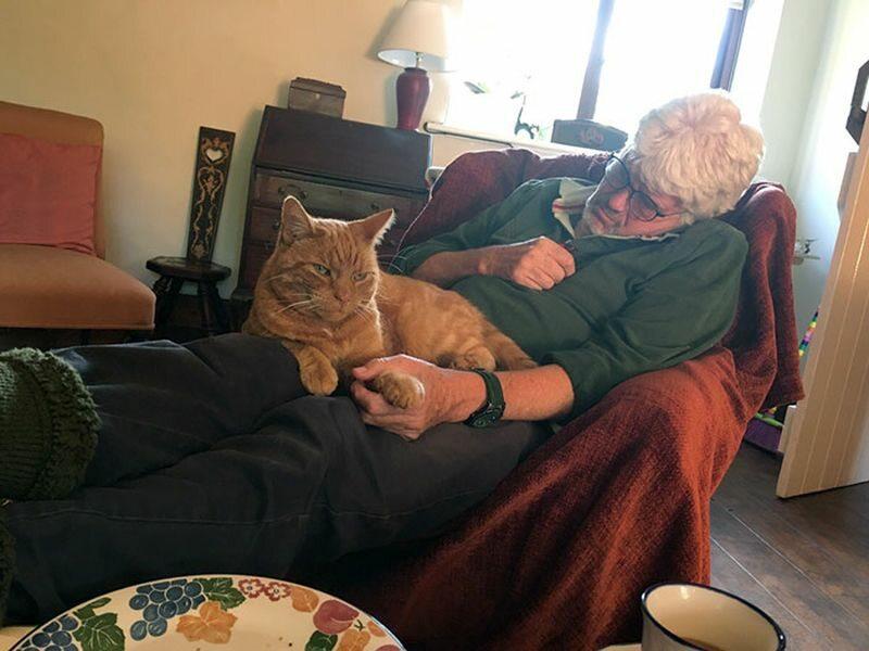 Kiedy zasypia, zawsze trzyma kota za łapę