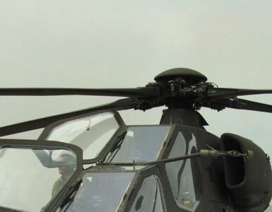 Na 43 śmigłowce Deutsche Marine, tylko trzy mogą latać
