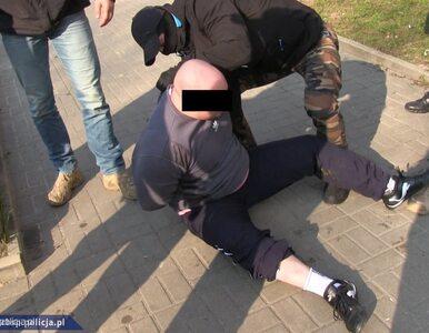CBŚP uderzyło w śląski narkobiznes. Osiem osób aresztowanych
