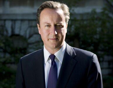Cameron: Unię Europejską można zmienić. Przygotowałem plan