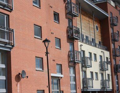 NBP: mieszkań jest za dużo, ceny będą niższe