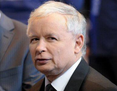 """Poseł PO: Kaczyński używa języka nienawiści, chyba czyta """"Mein Kampf"""""""