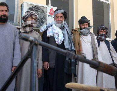 """Niespotykany apel przywódcy talibów. """"Sadźcie więcej drzew"""""""