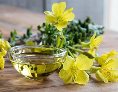 Jakie właściwości ma olej z wiesiołka i kiedy warto go stosować?