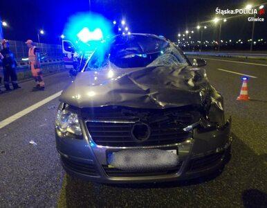 Samochód zderzył się z jeleniem. W wypadku zginął policjant