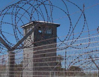 Władze USA torturowały więźniów częściej niż myślano?
