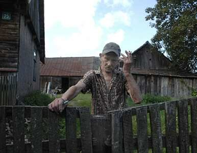 Rolnicy zutylizują martwe zwierzęta na koszt ARiMR