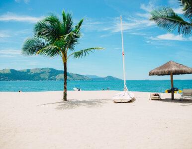 Turyści wybrali najpiękniejsze plaże świata. Gdzie ich szukać?