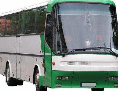 """Karambol na krajowej """"11"""". Ciężarówka wjechała w autobus pełen pasażerów"""